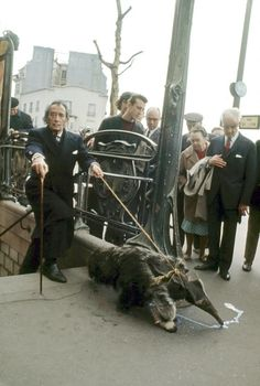 Salvador Dali taking his anteaters for a walk in Paris, 1969. <<<<<me