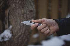 Spyderco Dragonfly 2 Little Big EDC Knife Review