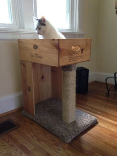 Cats Toys Ideas - Cat bed with scratching post made from wine crates - Ideal toys for small cats Diy Cat Scratching Post, Diy Cat Tree, Cat Trees, Ideal Toys, Cat Scratcher, Cat Room, Cat Condo, Pet Cage, Pet Furniture