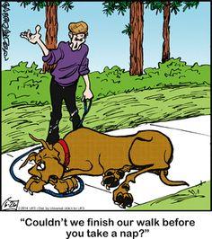 Marmaduke Comic Strip, June 2014 on Funny Dog Jokes, Funny Cartoons, Funny Dogs, Hilarious, Doggies, Pet Dogs, Dog Cat, Pets, Animal Humour