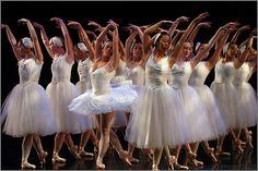 C and E - Swan Lake Ballet