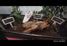 PUMA - compostable shoes