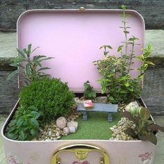 miniatuur tuin - miniature garden