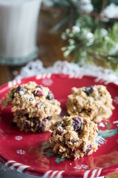 Rawmazing Raw Oatmeal Cookies with cranberries and ginger