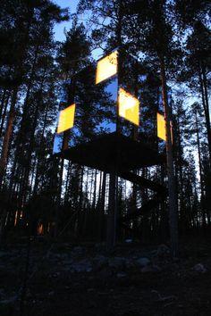 tree hotel.