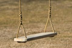 Premier Wood Tree Swing and 12 feet of rope per side ($99.00) - Svpply