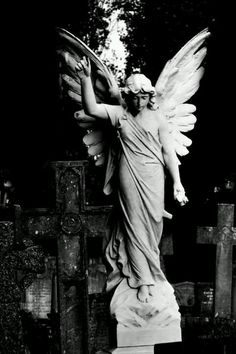 Willesden New Cemetery angel Cemetery Angels, Cemetery Statues, Cemetery Art, Angel Statues, Angels Among Us, Angels And Demons, I Believe In Angels, Ange Demon, Angel Art