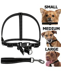 Dog Harness [FREE Leash Included] Heavy Duty - Adjustable & Durable - Premium Quality - Best Pet Control Training and Walking - Rescue Harness Collar for Medium/Small Dog (Medium). • FLEXIBLE SIZE- industry-leading dog leash available in small, medium and large sizes to fit all pets. Works superbly well with Husky, Miniature pinscher, Teddy, Chihuahua, Schnauzer, and Samo among many other pets. • 100% TOP QUALITY-this pet leash is designed from A-grade strong denim material that's both…