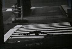深瀬昌久 -06