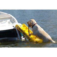 Paws Aboard Dog Boat Ladder-•Slip-resistant ribbed design that's safe for all pets