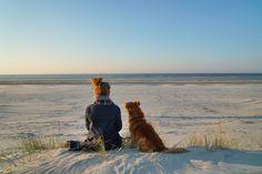 Sonnenuntergang auf den Dünen der Insel Juist #nordsee #dünen #juist
