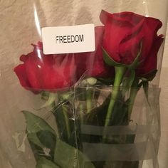 what offender believes his flowers offer for himself