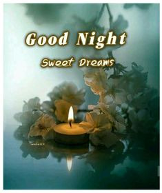 Good Night Blessings, Good Night Wishes, Good Night Sweet Dreams, Good Night Messages, Good Night Quotes, Evening Quotes, Good Night Image, Beautiful Moon, Good Morning