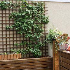 ¿Ideas para decorar tu jardín? - Descubrí la inspiración en homify Argentina