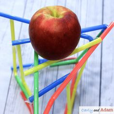 The Best Apple STEM Challenges and Science Experiments — Carly and Adam Apple Activities, Autumn Activities, Stem Teacher, Elementary Teacher, Classroom Freebies, Classroom Ideas, How To Make Applesauce, September Crafts, Science Experiments