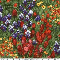 Michael Miller Southwest Texas Wildflowers Grass