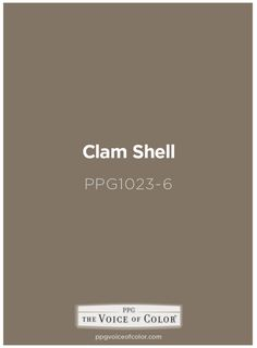 Clam Shell brown paint color from PPG Voice of Color