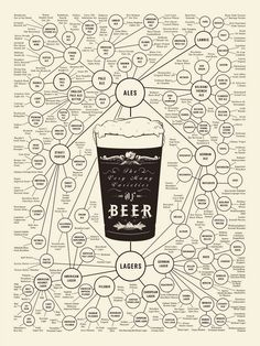 The World Of Beer Infographic