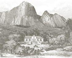 300 years of winemaking history   News   Anthonij Rupert Wines