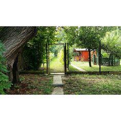 🏡 #szajol #secoundhand #beautiful #nature #naturelove #naturelovers #trees #arbor #filagora #fancy #greens #samsunggalaxya5 #nofilter #nofilteristhebestfilter Ture Love, Trees, Fancy, Instagram Posts, Nature, Plants, Beautiful, Naturaleza, Tree Structure