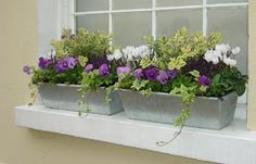 Gardening Autumn - drywall mud pan with flowers - With the arrival of rains and falling temperatures autumn is a perfect opportunity to make new plantations Winter Planter, Fall Planters, Metal Planters, Window Box Flowers, Flower Boxes, Winter Hanging Baskets, Winter Window Boxes, Pot Plante, Deco Floral