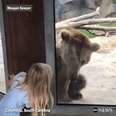 Playing Peek-A-Boo http://ift.tt/2ofXdms