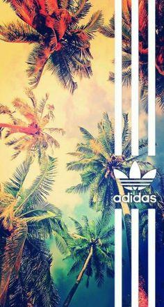 Wallpaper Fond d'écran Adidas avec des palmiers Cool Adidas Wallpapers, Adidas Iphone Wallpaper, Adidas Backgrounds, Hype Wallpaper, Graffiti Wallpaper, Screen Wallpaper, Cool Wallpaper, Cute Wallpapers, Wallpaper Backgrounds