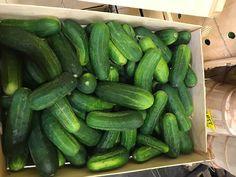 Cucumber, Vegetables, Food, Meal, Eten, Vegetable Recipes, Meals, Cauliflowers, Veggies