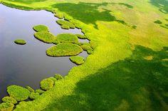 Inselteppich:  Regenzeit im Südsudan - der Sudd, ein 55.000 Quadratkilometer...