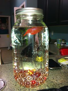 Mason Jar Fish Bowl