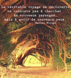 """""""Le véritable voyage de découverte ne consiste pas à chercher de nouveaux paysages, mais à avoir de nouveaux yeux."""""""