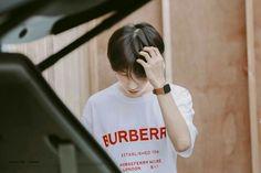 I need more pics of this look😔😔 Nct 127, Winwin, Taeyong, Jaehyun, Ntc Dream, Park Jisung Nct, Huang Renjun, Na Jaemin, Kpop