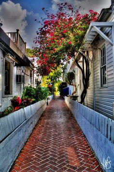 Houses in Key West, Florida
