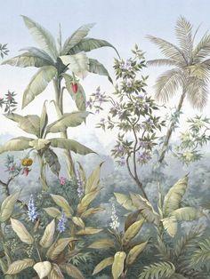 Illustration Botanique, Botanical Illustration, Botanical Prints, Mural Art, Wall Murals, Wall Art, Art Tropical, Tropical Prints, Jungle Art