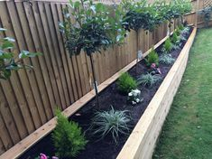 DIY garden fence ideas for protecting your plants Tags: Simple DIY garden fence … - Diyprojectsgardens.club, DIY garden fence ideas for protecting your plants Tags: Simple DIY garden fence . # simple # garden fence # ideas # your # plants. Wooden Garden Edging, Diy Garden Fence, Garden Shrubs, Garden Boxes, Easy Garden, Garden Pallet, Diy Pallet, Pallet Ideas, Garden Tips
