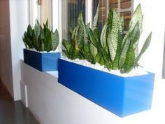 Blue cabinet Planter Boxes by Paul Pph on 500px