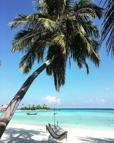 We're dreaming of our next big thing on the beach swing at COMO Maalifushi
