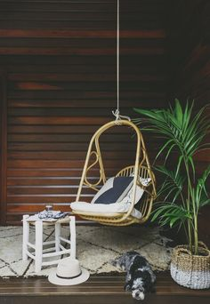 Byron Bay Hanging Chairs' curvy Rosie design was inspired by the 1960s and '70s; $475. byronbayhangingchairs.com.au