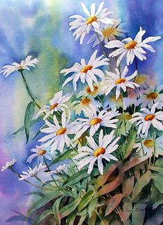 Daisies Floral Watercolor Art of Ann Mortimer