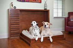 Murphy Pet Bed Is A Classy Folding Bunk For Your Spoiled Dogs