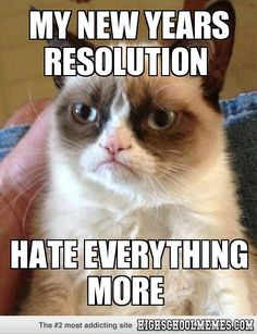 grumpy cat  My new years resolution Hate everything more