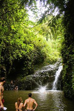 let birds fly: MAUNAWILI FALLS TRAIL | OAHU, HAWAII