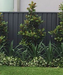 This post will give you some of the best simple backyard landscaping ideas for your cozy space. Backyard Pool Landscaping, Backyard Garden Design, Garden Bed, Garden Ideas Nz, Front Garden Landscape, Garden Paving, Landscape Plans, Hampton Garden, Townhouse Garden