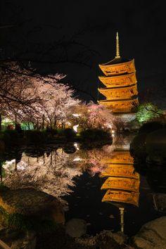 Toji temple, Kyoto, Japan