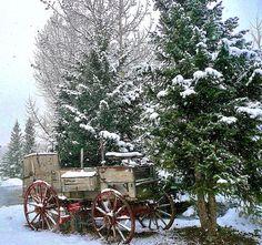 Snowing in the Rockies, Near Breckenridge, Colorado