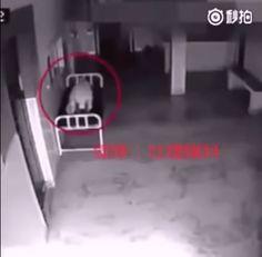 L'enregistrement de la caméra de sécurité de cet hôpital en Chine sème la terreur sur Internet. Cette vidéo montre une femme qui vient de décéder, mais que se passe-t-il dans la minute 0:14… la vérité est qu'ici quelque chose de très étrange se... #EspritQuitteLeCorps https://socialbuzz.fr/une-camera-de-securite-montre-un-esprit-quittant-un-corps/