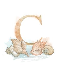 Letter C Conch Nature Alphabet Initial por LaPetiteMascarade