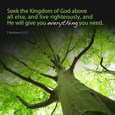 """""""But seek ye first the kingdom of God, and his righteousness; and all these things shall be added unto you."""" Matthew 6:33"""