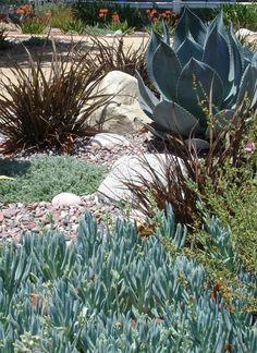 Garden Details Portfolio mediterranean landscape