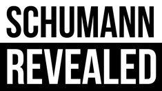 Schumann Resonance  Revealed - Who Was Schumann?  How resonance affects you..